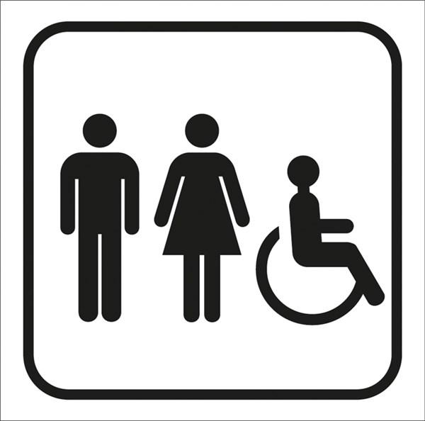 picto grav toilettes homme femme handicap s 100 x 100 mm gamme couleur direct signal tique. Black Bedroom Furniture Sets. Home Design Ideas