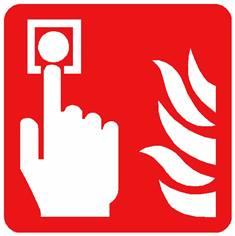 Panneau Point d´alarme incendie ISO 7010 - F005