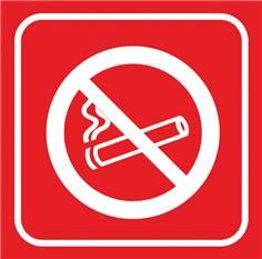 Picto gravé Zone non-fumeur - 100 x 100 mm - Gamme Couleur