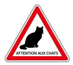 Panneau Routier Attention aux Chats