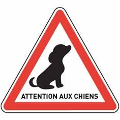 Panneau Routier Attention aux Chiens