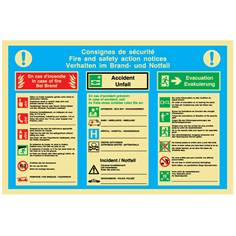 Consignes d´urgence en 3 langues - PVC Photoluminescent - H 300 x L 400 mm