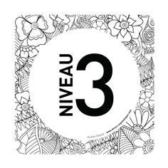 Plaque de porte Niveau 3 - 150 x 150 mm - PVC de 2 mm imprimé - Gamme Mosaïque®